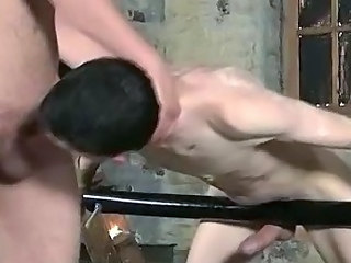 Horny tied up stud wrapping his lips around a cock