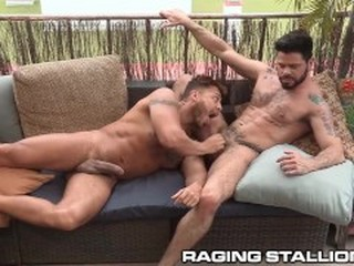 Videos from gayhdxxx.com