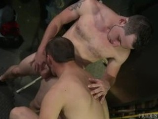 Videos from freshgayporno.com